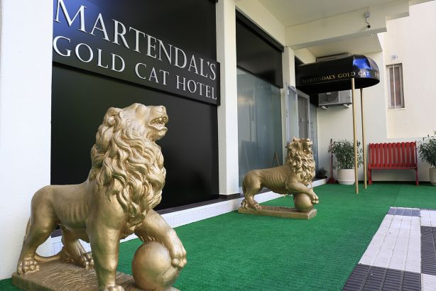 Foto 1 de Hotel para Gatos Martendal Gold Cat