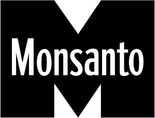 Foto 1 de Manuel Monsanto Construções Unipessoal Lda
