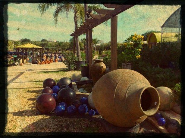 Foto 2 de Quinta da Ataboeira - Centro de Jardinagem