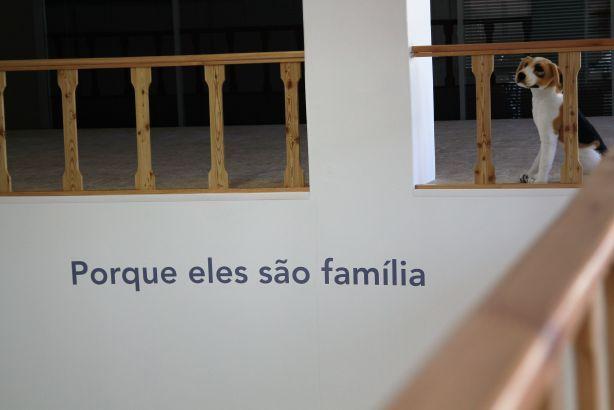 Foto 2 de Clínica Veterinária Family Vet