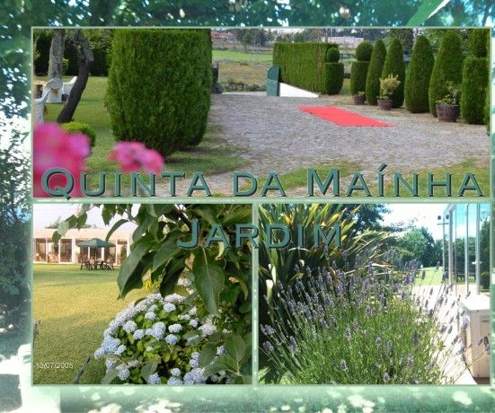 Foto 7 de Dom de Fada Eventos Lda.