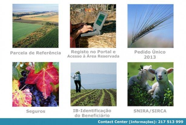 Foto de Instituto de Financiamento da Agricultura e Pescas, I.P