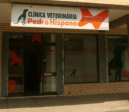 Foto 1 de Clínica Veterinária Pedro Hispano, Unipessoal Lda