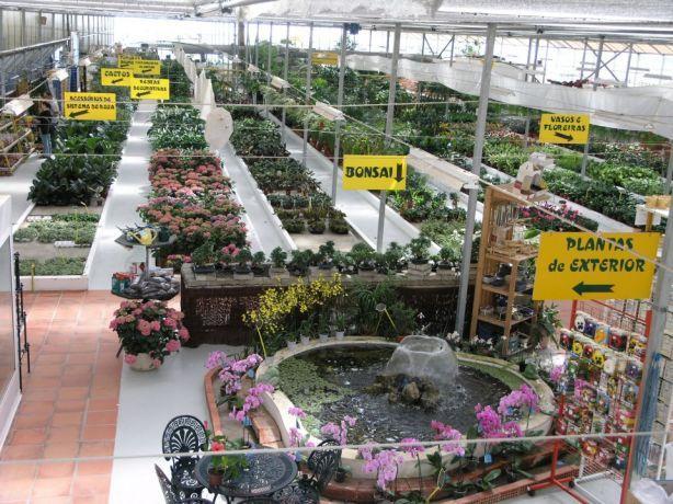 Foto 3 de Iberplanta - Empreendimentos Paisagisticos e Floricola, Lda