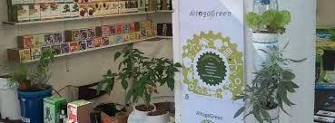 Foto de Altogagreen, Soluções Ecológicas e Lúdicas