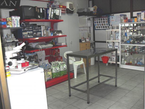 Foto 1 de Clinica Veterinaria