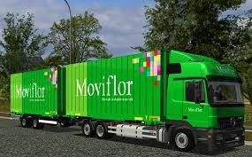 Foto 2 de Moviflor, Corroios (Encerrada)