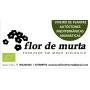 Logo Viveiros Flor de Murta