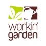 WorkinGarden - Paisagismo